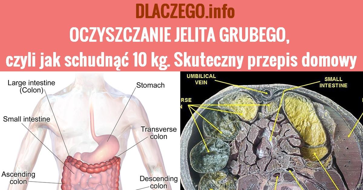 DLACZEGO.INFO-OCZYSZCZANIE-JELITA-GRUBEGO-PRZEPIS