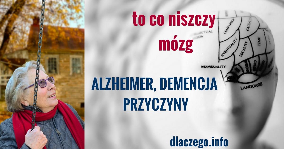 dlaczego.info-alzheimer-demencja-przyczyny-to-niszczy-mozg
